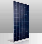 Conergy PE 255 Watt Poly Solar Panel - Clear Frame