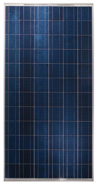 Yingli 305 Watt Poly Solar Panel Factory Clearance Sale
