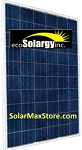 ecoSolargy 260 Watt Poly Solar Panel | Clear Frame | 60-Cell